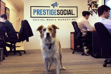 Prestage Social Wall